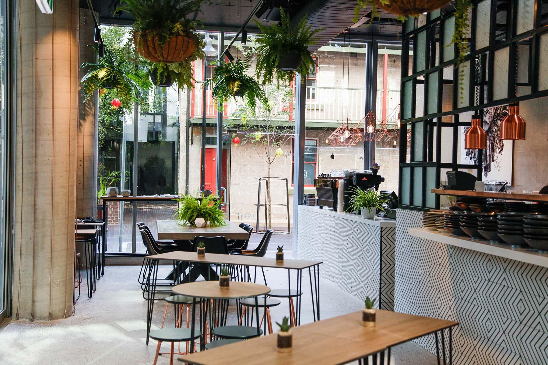 Concrete Jungle Interior